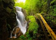 <p>In the midst of New Hampshire's White Mountains you can visit the Flume gorge to see waterfalls cut through the granite walls. </p>