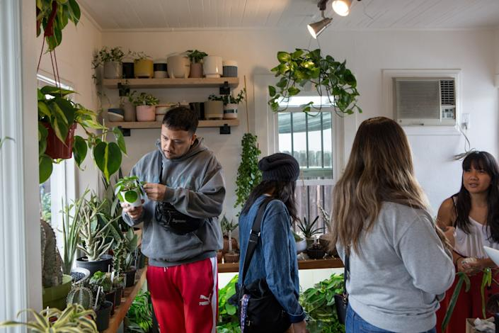 Customers shop for rare plants at Leaf and Spine.