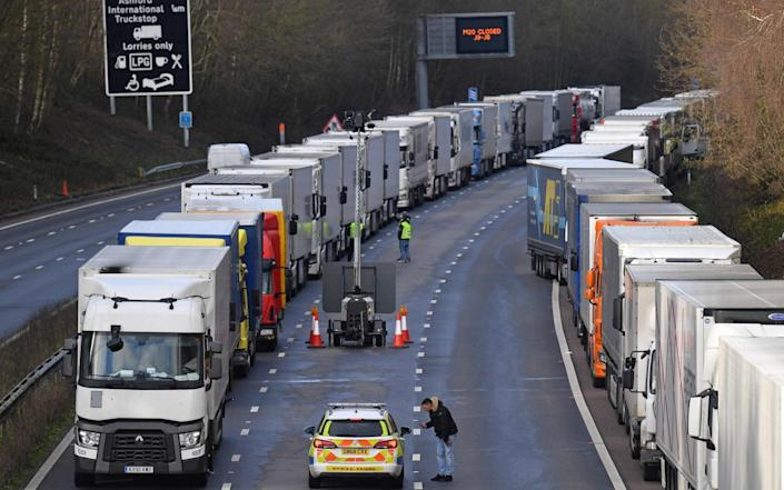 The worrying scenes at Dover were seen as a warning for what a no-deal Brexit cold look like - JUSTIN TALLIS/AFP