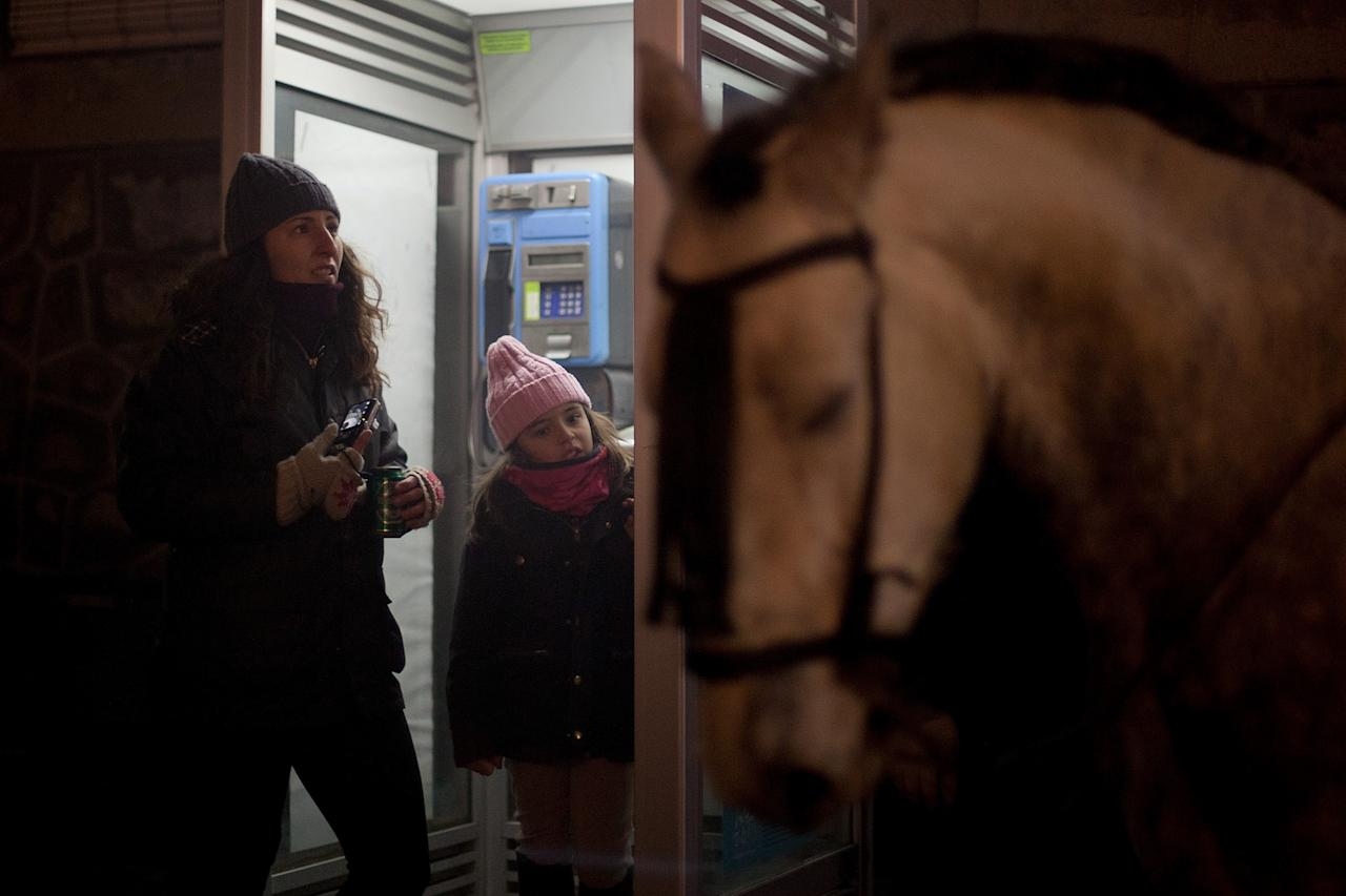 SAN BARTOLOME DE PINARES, SPAIN - JANUARY 16:  A girl looks at a horse from a phonebox on January 16, 2013 in San Bartolome de Pinares, Spain. In honor of San Anton, the patron saint of animals, horses are riden through the bonfires on the night before the official day of honoring animals in Spain.  (Photo by Pablo Blazquez Dominguez/Getty Images)