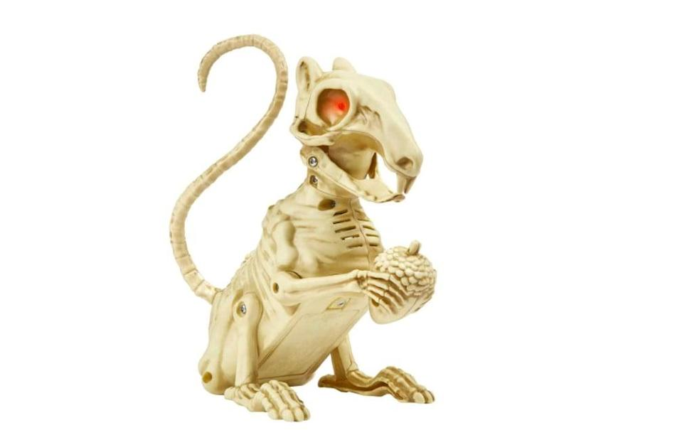 <p>Want a morbid twist on those chipper squirrels you see prancing around the campus lawn? Consider bringing the <span>Animated LED Halloween Skeleton Squirrel</span> ($13) into your dorm - it's seven inches and uses sound sensors to know when to scare visitors!</p>
