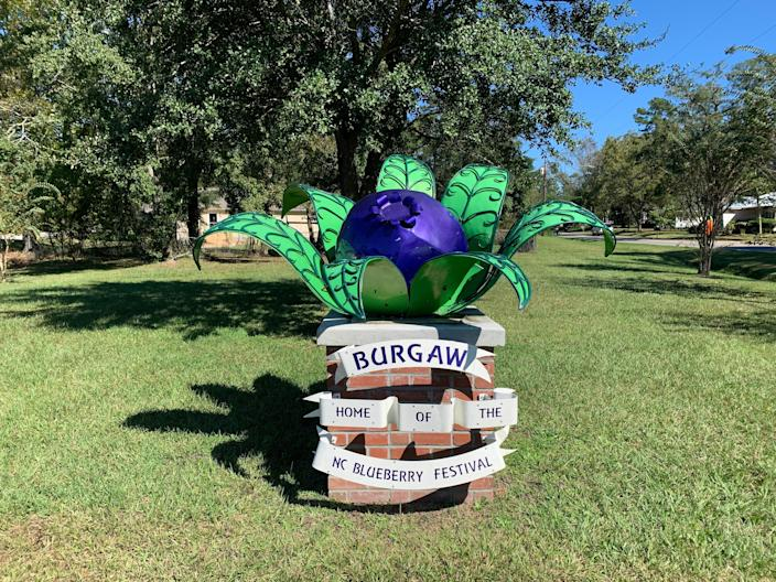 A statue in Burgaw commemorating the NC Blueberry Festival, which was canceled this year due to the COVID-19 pandemic.