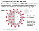 Graphic shows a diagram of the COVID-19 virus.