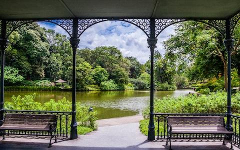 singapore botanic gardens - Credit: MANFRED GOTTSCHALK