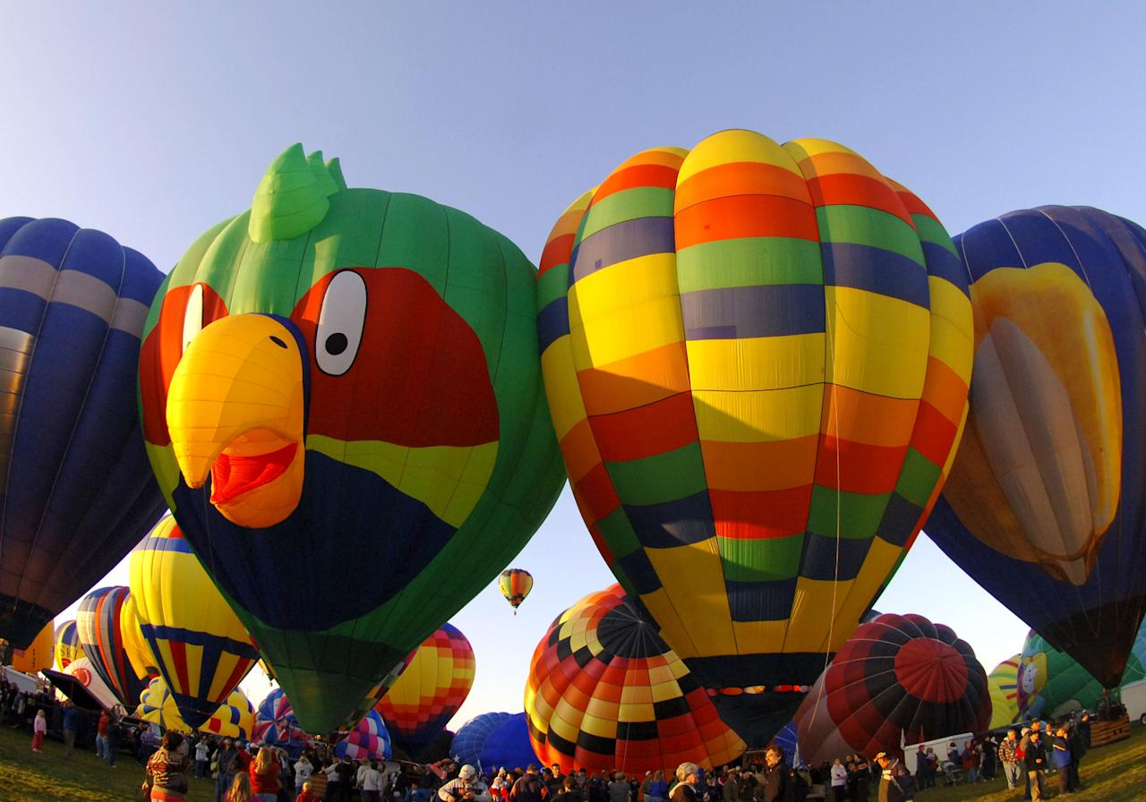 Hot air balloons wait for liftoff during a morning ascent  at the Albuquerque International Balloon Fiesta on October 8, 2005. (Photo by A. Messerschmidt/Getty Images)