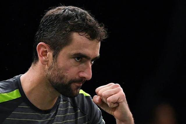 Marin Cilic has withdrawn from Croatia's Davis Cup squad becuse of a knee injury (AFP Photo/Christophe ARCHAMBAULT)