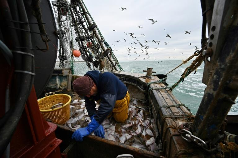 While fishing accounts for less than 0.1 percent of UK's economic output, it played a key role in the Brexit referendum
