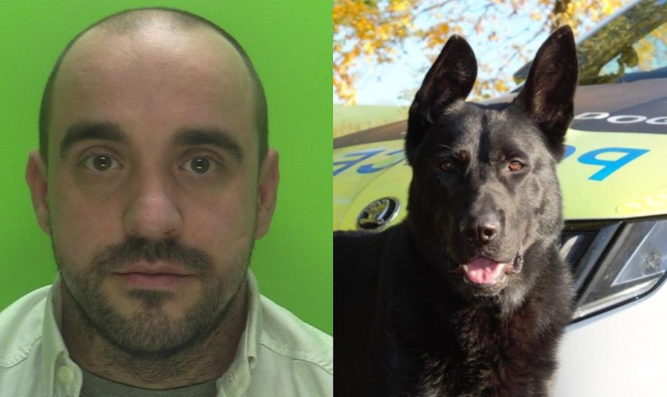 Police Dog Reno tracked down Gary Pearson using the scent of his woolly hat. (SWNS)