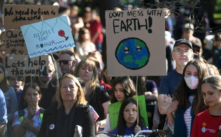 Friday's protests were the latest in a series of strikes inspired by environmental campaigner Greta Thunberg