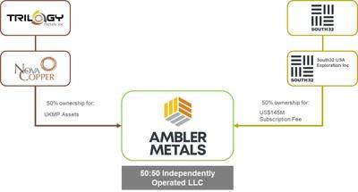 Current ownership structure of Ambler Metals (CNW Group/Trilogy Metals Inc.)