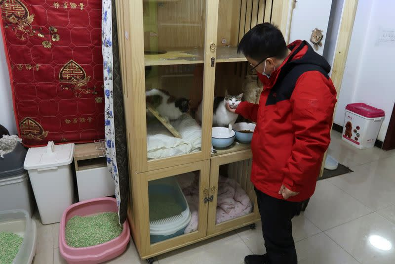 Du Fan interacts with a cat while posing for media at his association's cat sanctuary in Wuhan