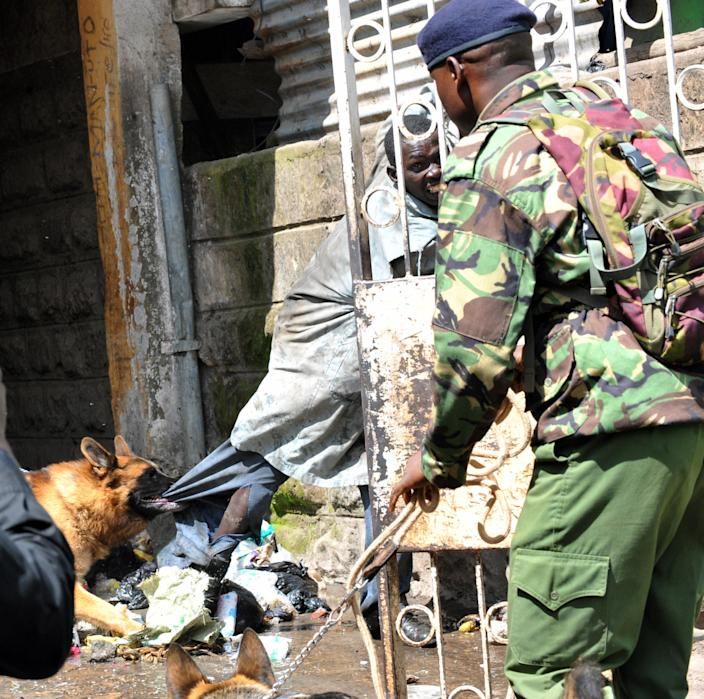 A Kenyan police dog on patrol catches a rioter in a street in Eastleigh, Nairobi, Kenya, Monday, Nov. 19, 2012. Police in Kenya fired bullets into the air and tear gas into the streets to stop two groups from clashing one day after an improvised explosive device ripped through a bus and killed seven people. Alfred Mutua, a witness to Monday's clashes in downtown Nairobi, said people are angry at ethnic Somalis, whom many Kenyans broadly blame for a series of grenade and explosive device attacks in Kenya over the last year. Mutua said others are trying to take advantage of the chaos by looting shops. (AP Photo)