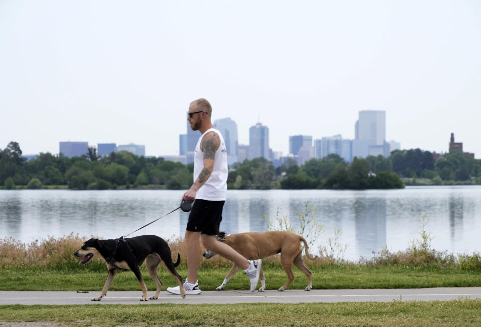 A man walks dogs alongside Sloan's Lake in Denver on Wednesday, June 16, 2021. A heat wave continues to hover over the western U.S., pushing the temperature to 99 degrees in Denver. (AP Photo/Brittany Peterson)