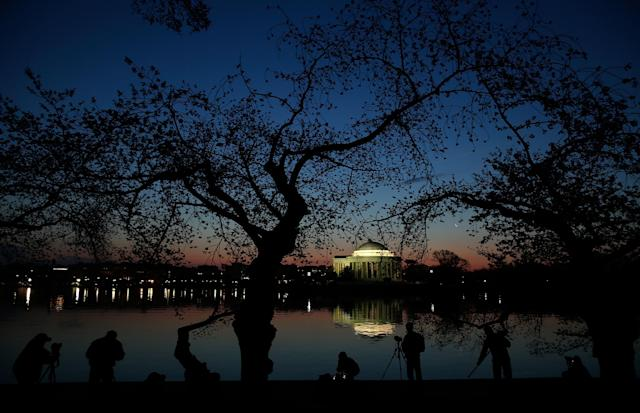 WASHINGTON, DC - APRIL 08: People gather on the edge of the Tidal Basin to take photographs of the cherry blossoms at sunrise after a colder than normal March and chilly April delayed the beginning of the blooming season in the nation's capital April 8, 2013 in Washington, DC. Peak bloom was originally predicted between March 26 and March 30th, with the revised prediction moving to April 6-10. (Photo by Win McNamee/Getty Images)