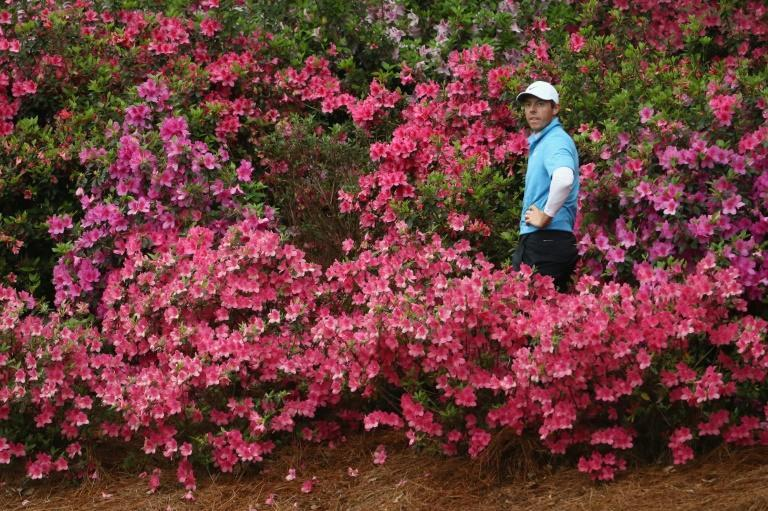 As lovely as the flowers are on the 13th hole at Augusta National, Rory McIlroy hopes not to have such a close look at them again in this year's 85th Masters golf tournament