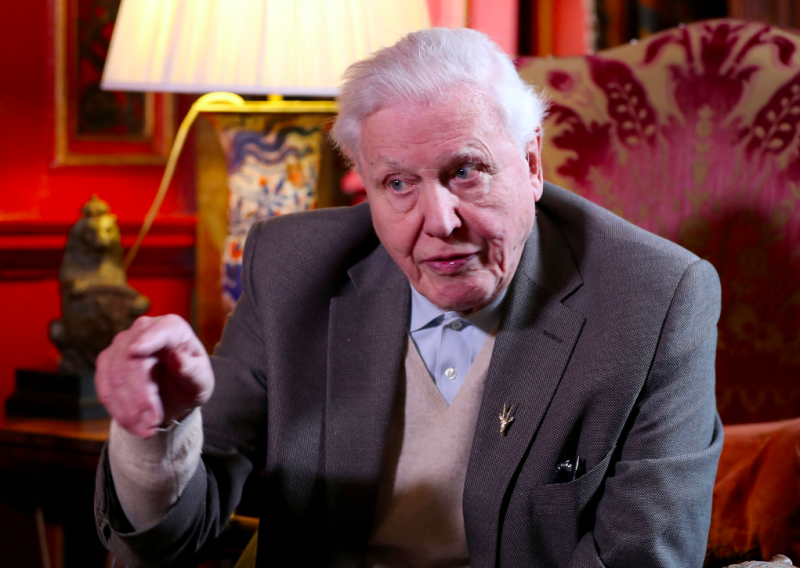Sir David Attenborough has criticised Brexiteers (Picture: PA)