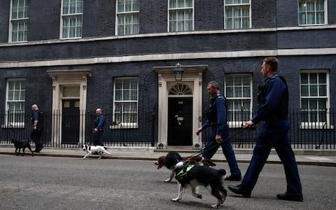 Security officers walk their dogs outside Downing Street  - Credit: Hannah McKay/Reuters