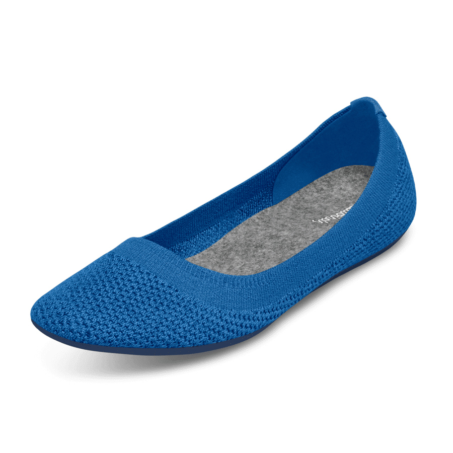 <p>These lightweight and breathable <span>Allbirds Tree Breezers Flats</span> ($95) are great for after working out or running errands.</p>