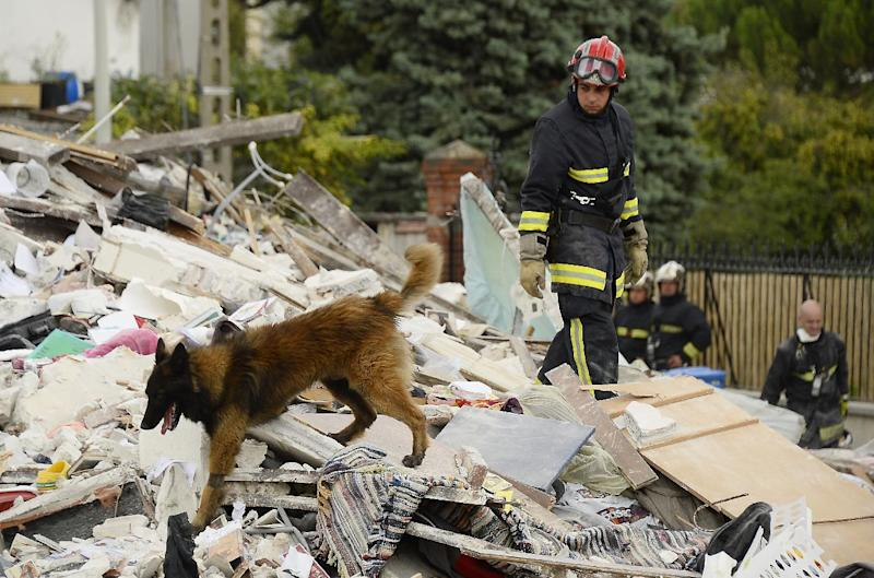 A firefighter and a dog search through the rubble of a four-storey residential building that collapsed following a blast in Rosny-sous-Bois in the eastern suburbs of Paris on August 31, 2014 (AFP Photo/Bertrand Guay)