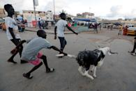 People run as they play with an animal ahead of the Muslim festival of sacrifice Eid al-Adha, amid the coronavirus disease (COVID-19) outbreak, in Dakar, Senegal July 30,2020. REUTERS/Zohra Bensemra TPX IMAGES OF THE DAY