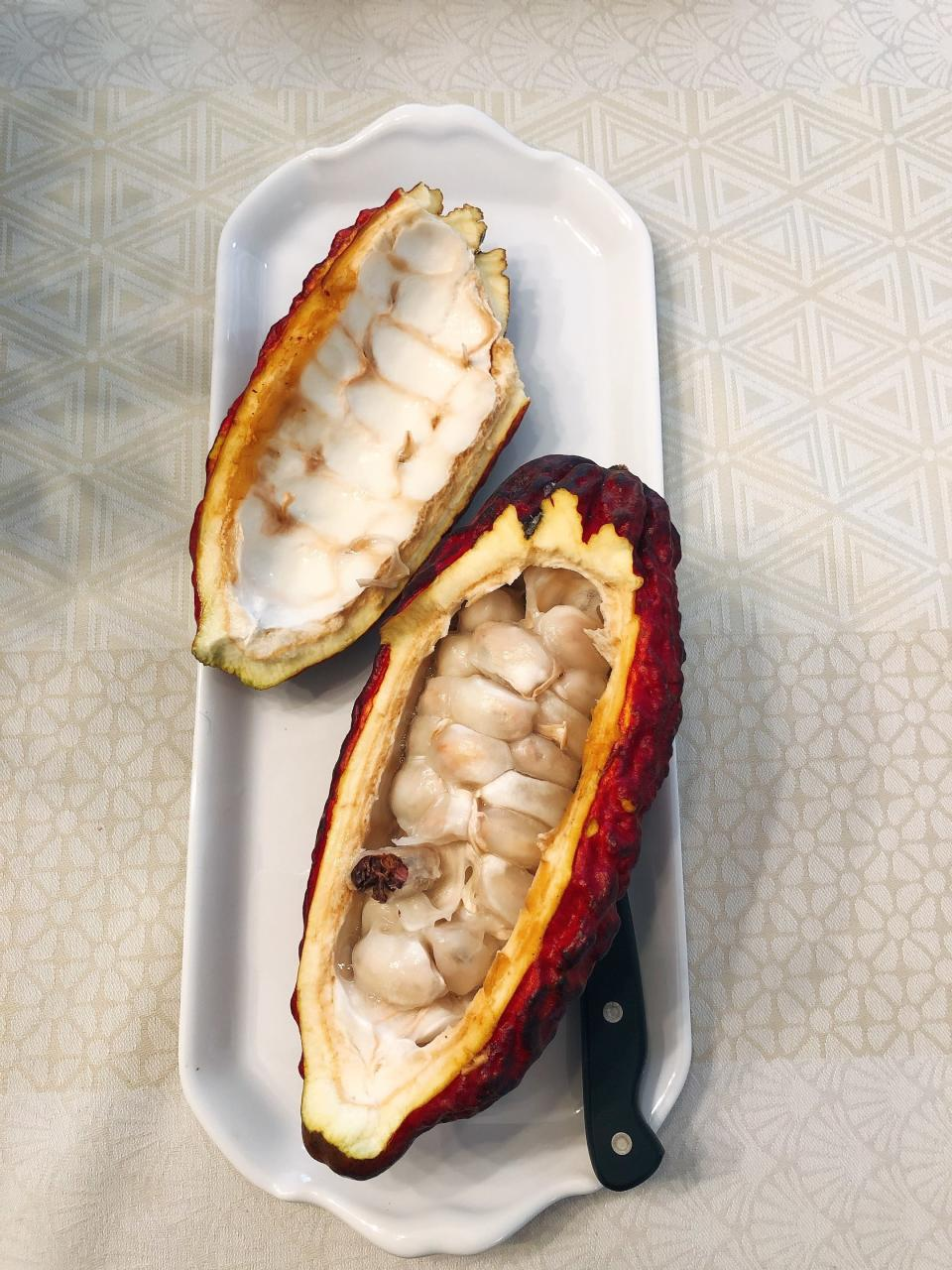 A fresh cacao pod appears on a platter in Alexandria, Va., on Oct. 1, 2020. There's more to cacao than chocolate. The cacao fruit and pulp can be used for cooking as well. (Elizabeth Karmel via AP)