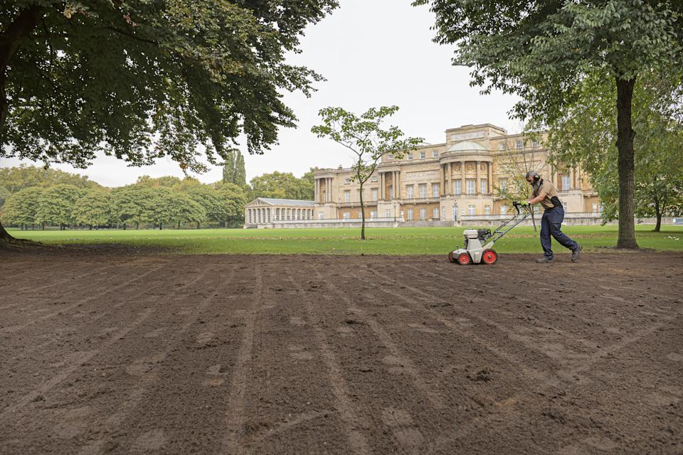 For single use only in connection with Buckingham Palace: A Royal Garden, not to be archived, sold on or used out of context. Undated handout photo issued by the Royal Collection Trust of a member of the gardening team at Buckingham Palace, London, tending to the lawns that are usually in need of repair after a busy summer of use for royal events. The secret of how the Buckingham Palace garden is kept so immaculate is subject of a new behind the scenes book, Buckingham Palace: A Royal Garden, which charts a year in the life of the 39-acre oasis, which boasts sweeping lawns, a 156-metre herbaceous border, wildflower meadows, a rose garden and a 3.5-acre lake. Issue date: Tuesday February 23, 2021.