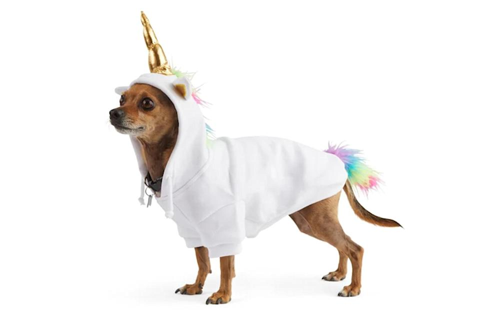 """<p>This hoodie costume provides comfort and style. </p> <p><strong>Buy it!</strong> Born to Unicorn Pet Hoodie, $27.99; <a href=""""https://www.anrdoezrs.net/links/8029122/type/dlg/sid/PEO25HalloweenCostumesforDogsthatWillHaveTrickorTreatersHowlingwithJoykbender1271PetGal12909733202109I/https://www.petco.com/shop/en/petcostore/product/bootique-born-to-unicorn-pet-hoodie-x-large-3345899"""" rel=""""sponsored noopener"""" target=""""_blank"""" data-ylk=""""slk:Petco.com"""" class=""""link rapid-noclick-resp"""">Petco.com</a></p>"""