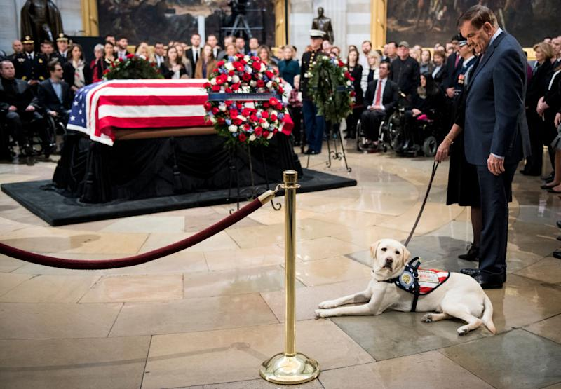 Sully, former President George H. W. Bush's service dog, visits the U.S. Capitol rotunda as his late owner lies in state on Dec. 4, 2018. (Photo: Bill Clark/CQ Roll Call)