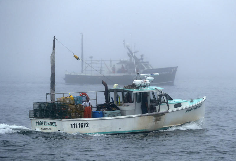 In this Wednesday, July 25, 2018 photo, lobster fishing boats head out to sea on a foggy morning off South Portland, Maine. The impacts of China's seafood tariffs are being felt in Maine, where lobster prices are falling. (AP Photo/Robert F. Bukaty)