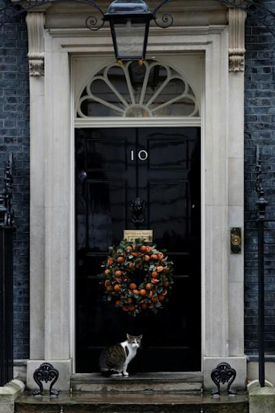 Johnson met his ministers inside the prime minister's residence at 10 Downing Street (AFP Photo/Adrian DENNIS)