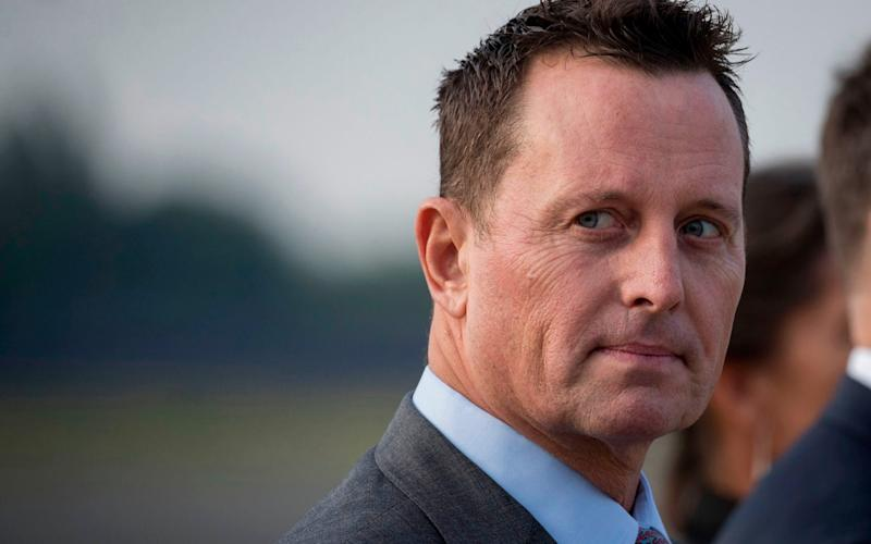 Richard Grenell has no relevant background or top-level management experience - AFP