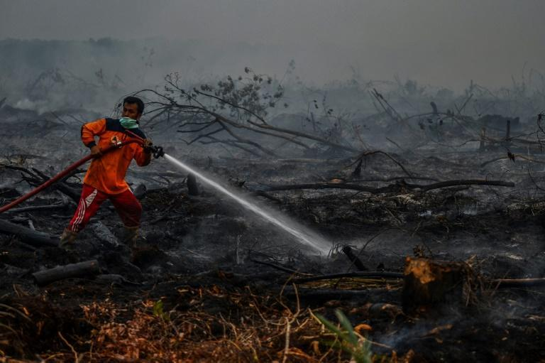 """The number of """"hotspots"""" -- areas of intense heat detected by satellite which indicate a high chance of fire -- have jumped sharply in Indonesia"""