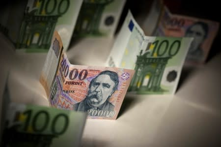 Hungarian government has no exchange rate target - PM Orban's cabinet chief