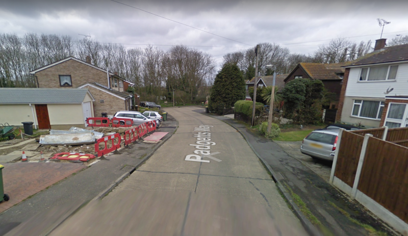 Janet Lewis, 76, was found stabbed to death in a house of Padgetts Way, Essex (Google Maps)