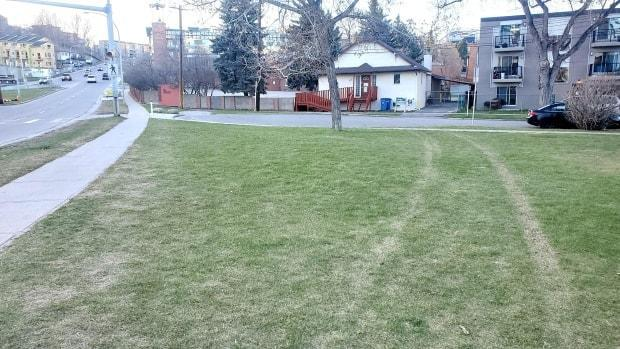 Tire tracks can be seen on the green space in Bridgeland where a pedestrian was killed in April when a truck veered off Edmonton Trail and struck the victim. Charges have since been laid against a 38-year-old man. (Robson Fletcher/CBC - image credit)