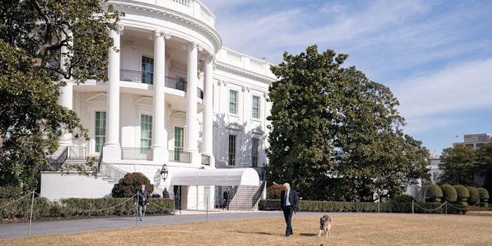 white house dogs