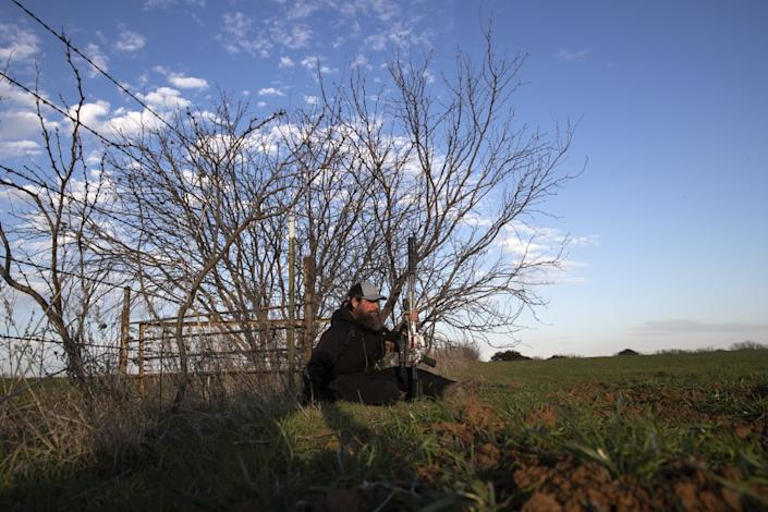 Chase Lasater sits with his rifle in a wheat field as he waits for nightfall, when wild hogs will assemble.
