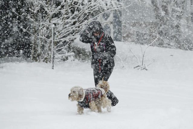<p>A woman walks her dog during a winter storm on March 7, 2018, in Springfield, Pa. (Photo: Matt Slocum/AP) </p>