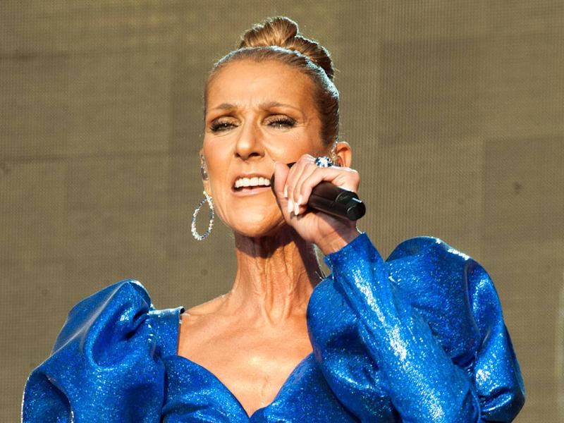 Celine Dion tour crew member electrocuted - report