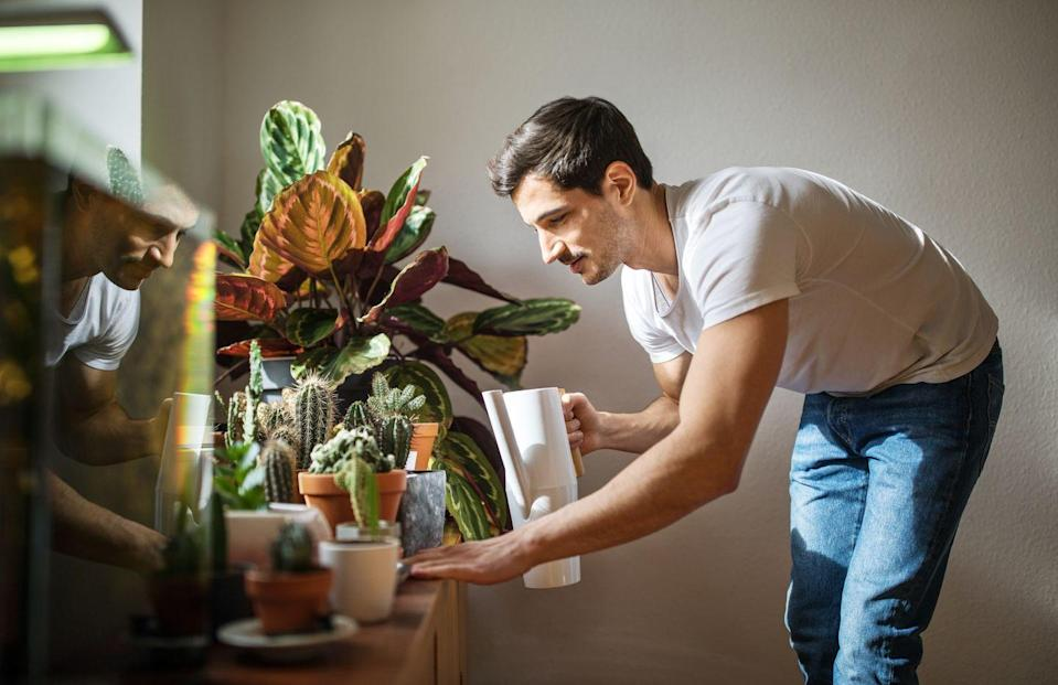 """<p>If you've been laid off or furloughed and are currently locked in because of a quarantine, you're probably looking for new ways to distract yourself. Why not start a hobby? Things like starting an herb garden, puzzles or <a href=""""https://www.elle.com/culture/movies-tv/g31969824/best-documentaries-on-netflix/"""" rel=""""nofollow noopener"""" target=""""_blank"""" data-ylk=""""slk:watching documentaries"""" class=""""link rapid-noclick-resp"""">watching documentaries</a> are cost-effective hobbies that give your brain some boost. </p>"""
