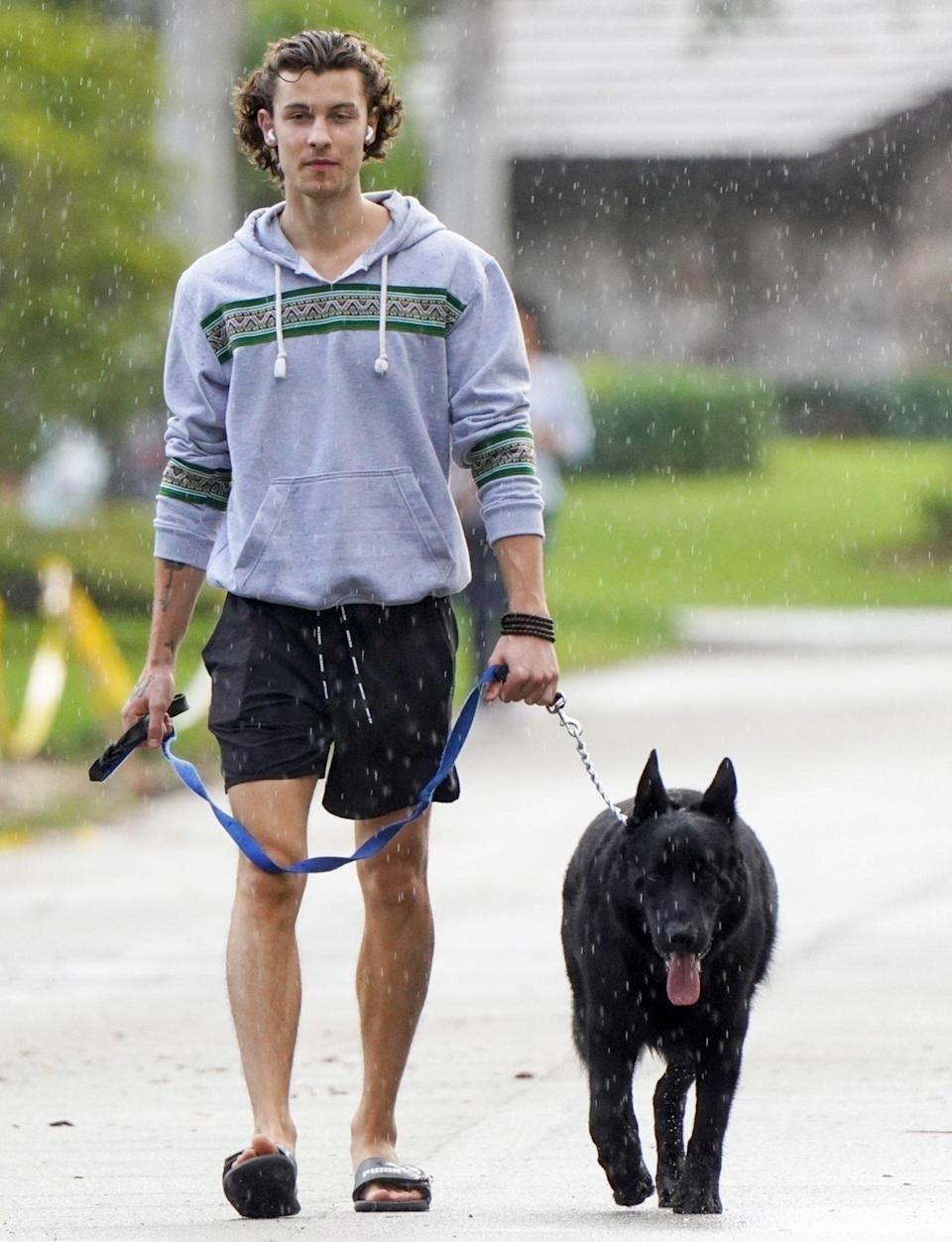 <p>Shawn Mendes walks his dog in the rain on Thursday in Miami. </p>