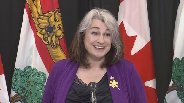 MLA Hannah Bell, chair of the standing committee on rules, regulations, private bills and privileges, says it's important for government to respond to issues brought before the house in the form of petitions from the public.