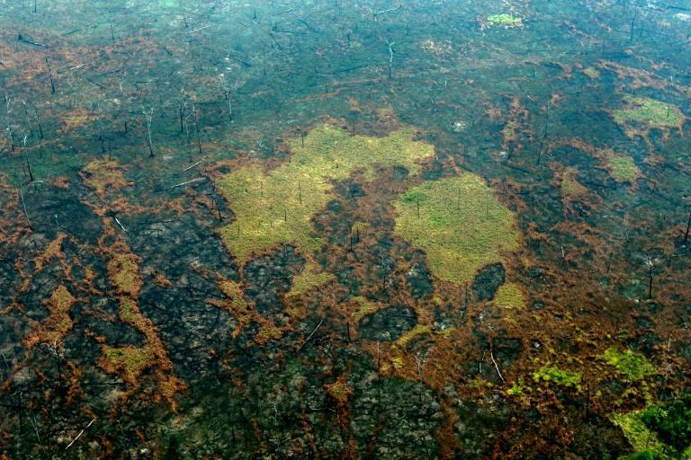 Burnt areas of the Amazon rainforest, near Boca do Acre, Brazil, in 2019 -- the number of wildfires in Brazil increased 12.7 percent in 2020