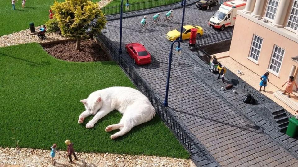 Giant Cat optical illusion at Babbacombe Model Village and Gardens - big cat surronded by a miniature town