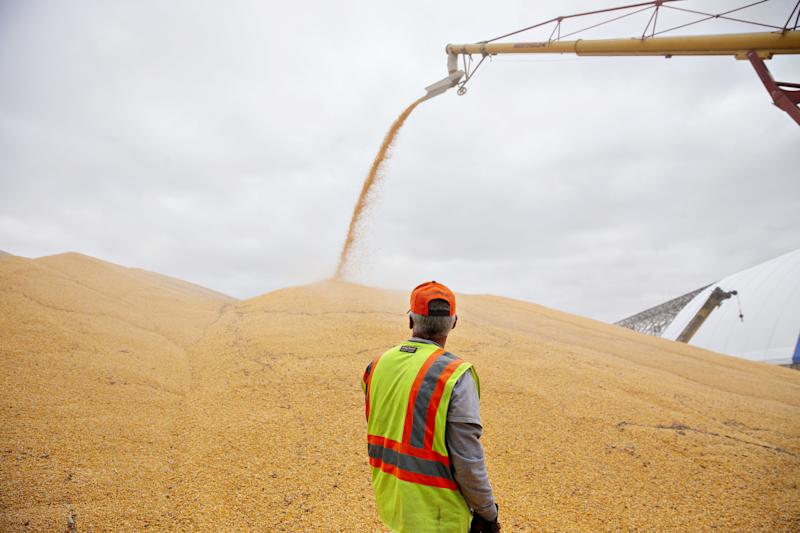 Trump's Trade War Is Driving Soybean Farmers to Corn