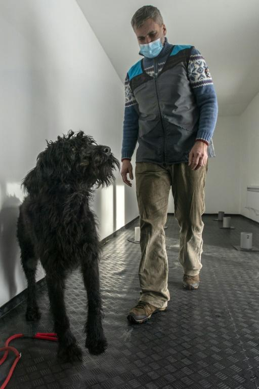 Project head Gustav Hotovy, with his big Schnauzer dog, says the coronavirus changes human tissue, which affects a person's scent signature