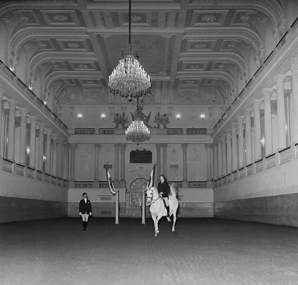 <p>Anne shows off her equestrian skills at the famed Spanish Riding School during the royal family's state visit to Austria.</p>