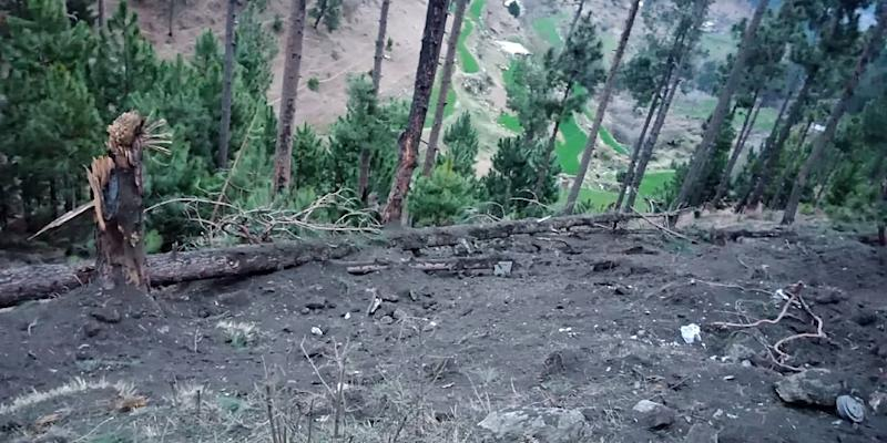 "Pakistan's climate change minister said ""dozens"" of trees were killed in the strike in Balakot"