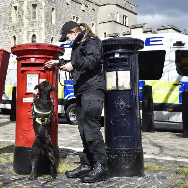 A police officer and search dog examine a post box in Windsor ahead of the funeral of the Duke of Edinburgh on Saturday