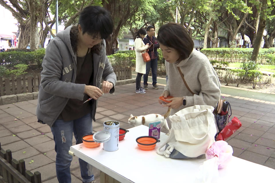 """In this image made from video, Taiwanese math teacher Hung Pei-ling, left, prepares cat food for stray cats with another volunteer in Taipei, Taiwan, on Dec 20, 2020. Launched in September, the """"cafeteria"""" is actually 45 small wooden houses painted by Taiwanese artists and scattered across Taipei. The idea is to give the cats a place to rest while making feeding them less messy. (AP Photo/Huizhong Wu)"""